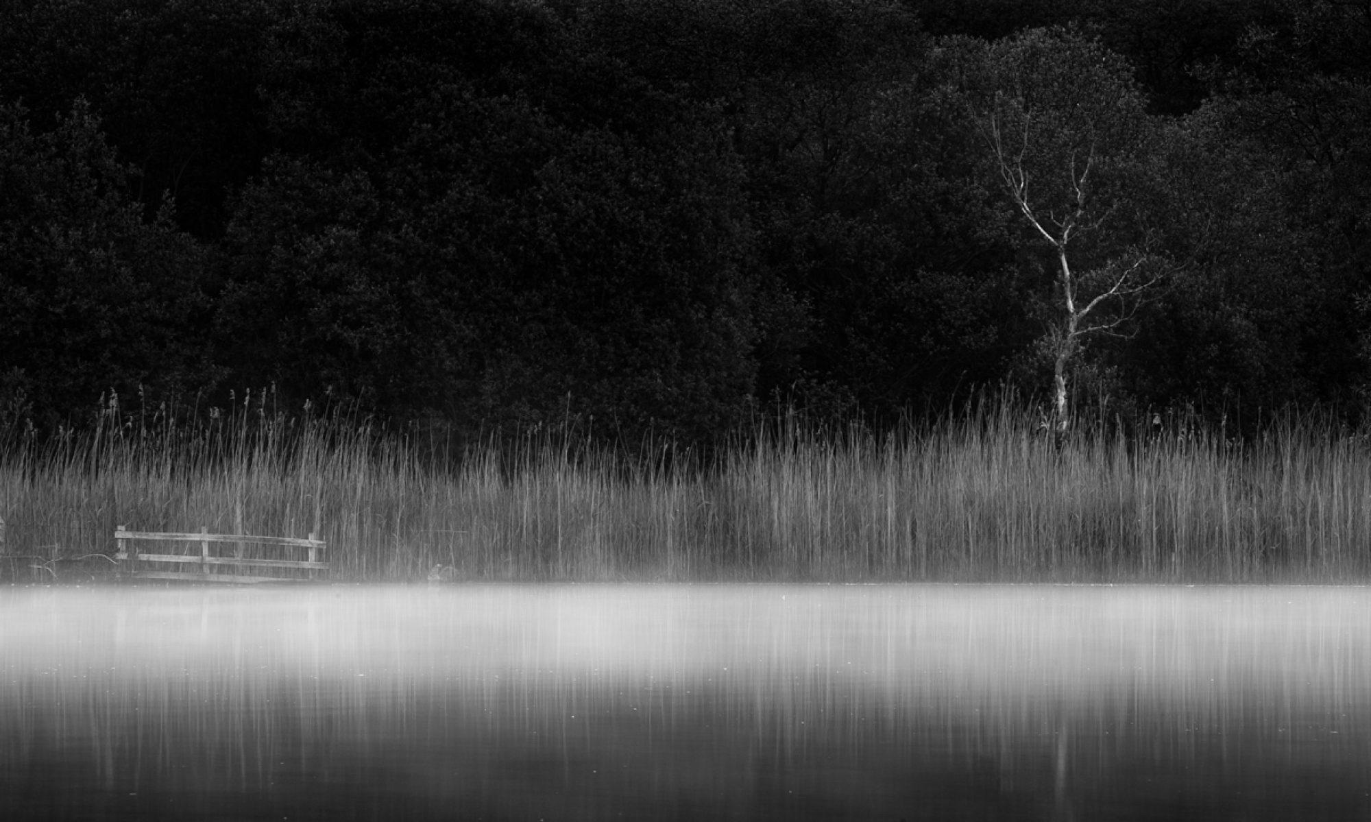 Rob Friel Photographer